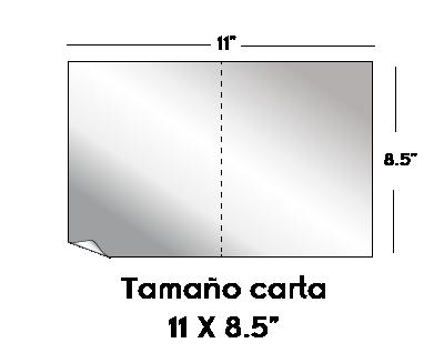 Bifoliares-12